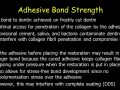 Immediate Dentin Sealing: Adhesive Bond Strength